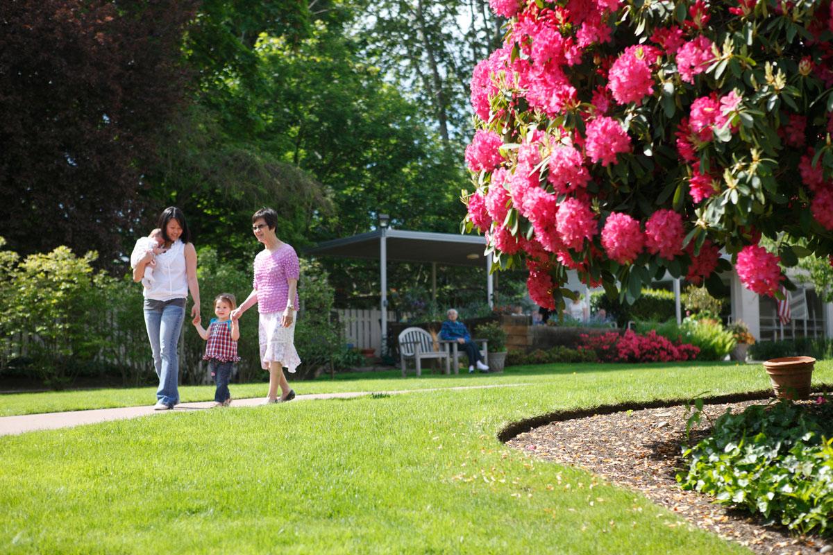 family-house-garden-11